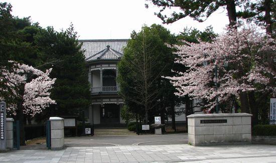 安積歴史博物館 桜 満開